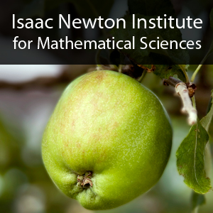 20th Anniversary of the Isaac Newton Institute's image