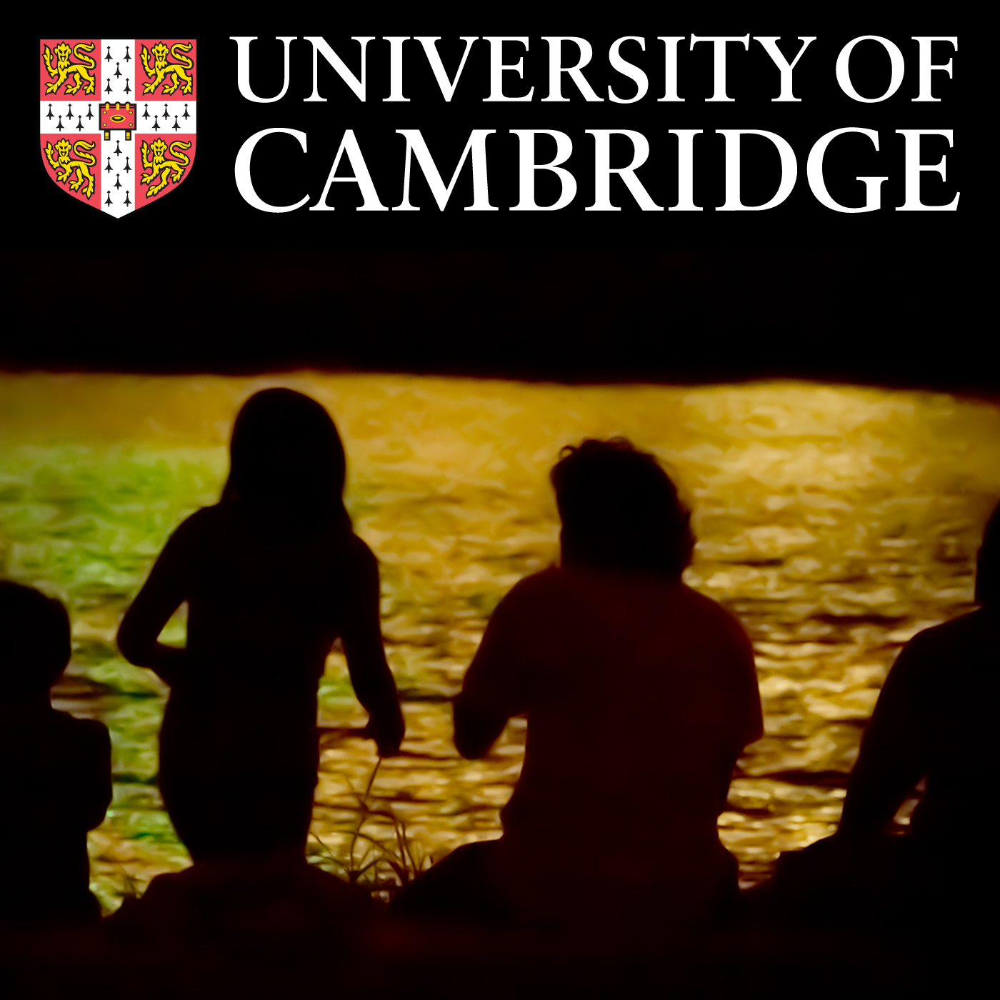 Centre for Family Research Podcast series's image